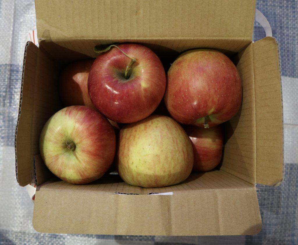 りんご詰め放題
