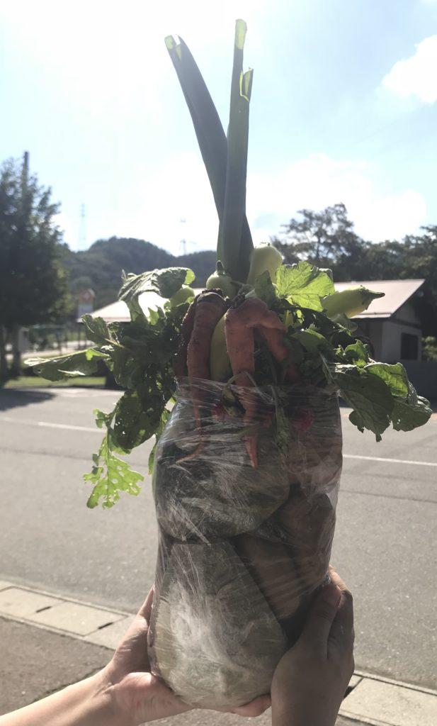 野菜詰め放題の結果